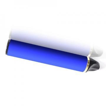 Flavored Salt Nicotine Vaping Device Mini Disposable E Cigarette
